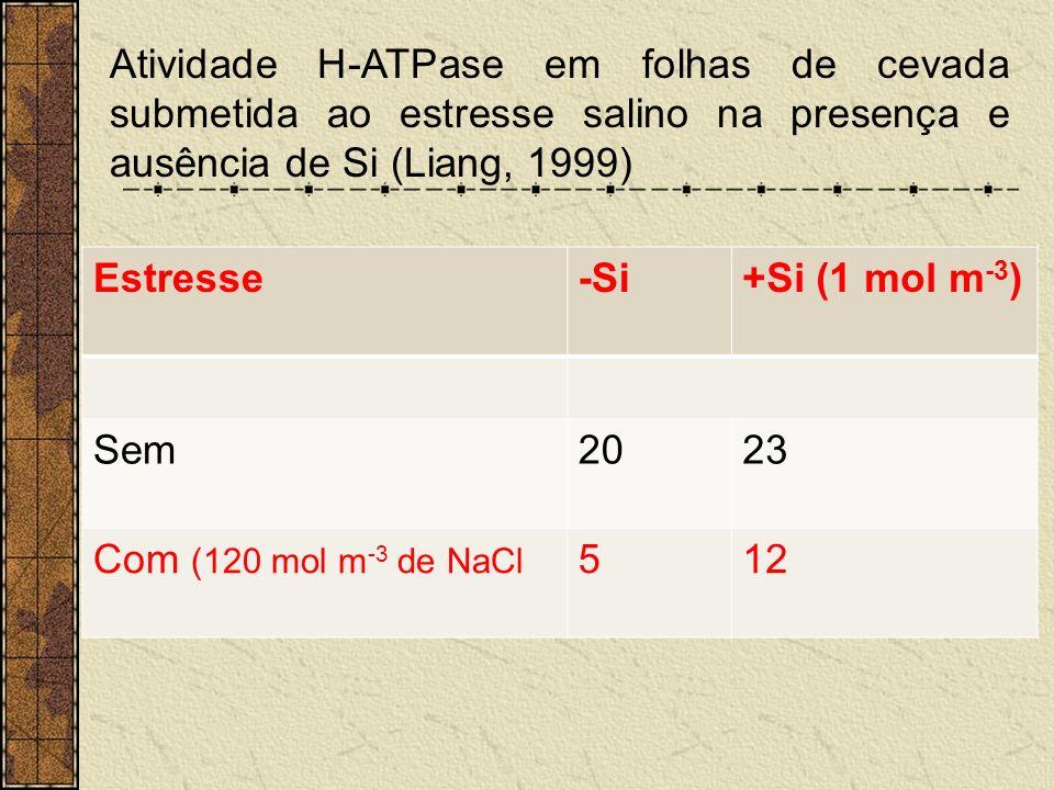 Atividade H-ATPase em folhas de cevada submetida ao estresse salino na presença e ausência de Si (Liang, 1999) Estresse-Si+Si (1 mol m -3 ) Sem2023 Co