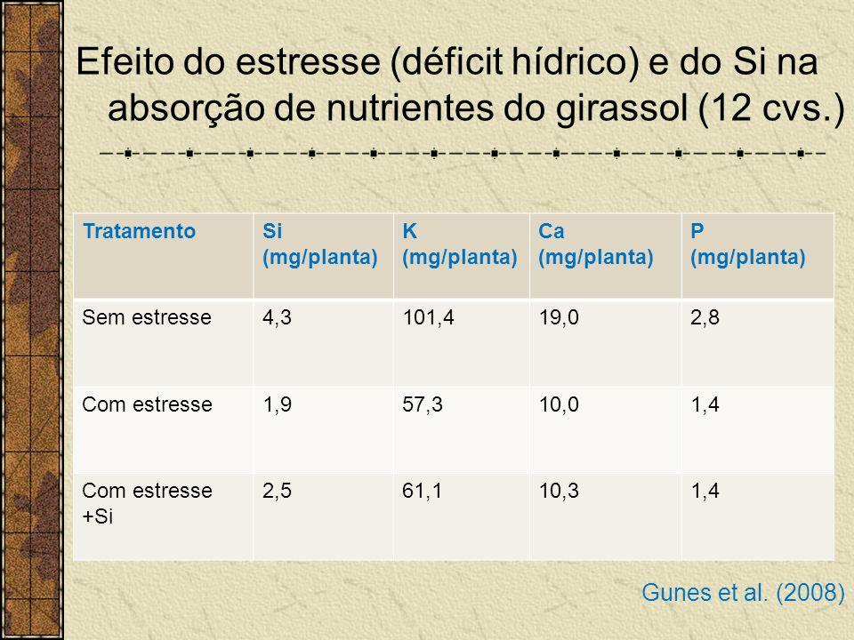 Efeito do estresse (déficit hídrico) e do Si na absorção de nutrientes do girassol (12 cvs.) TratamentoSi (mg/planta) K (mg/planta) Ca (mg/planta) P (