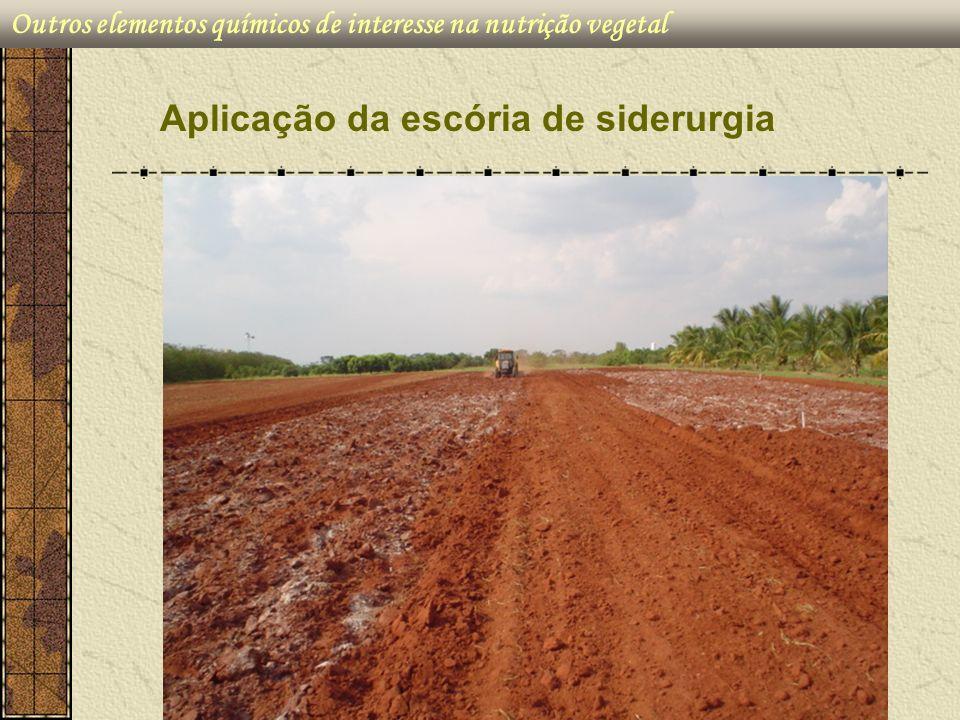 Outros elementos químicos de interesse na nutrição vegetal Aplicação da escória de siderurgia