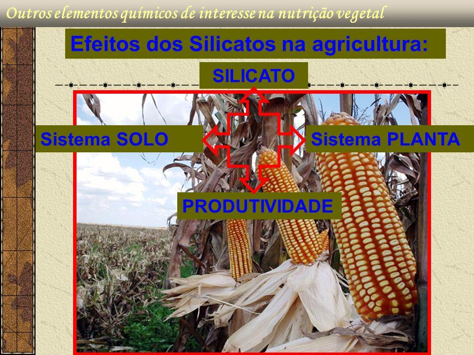 Outros elementos químicos de interesse na nutrição vegetal Efeitos dos Silicatos na agricultura: PRODUTIVIDADE Sistema SOLOSistema PLANTA SILICATO