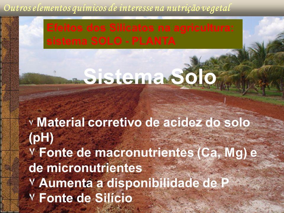Outros elementos químicos de interesse na nutrição vegetal Sistema Solo ۷ Material corretivo de acidez do solo (pH) ۷ Fonte de macronutrientes (Ca, Mg
