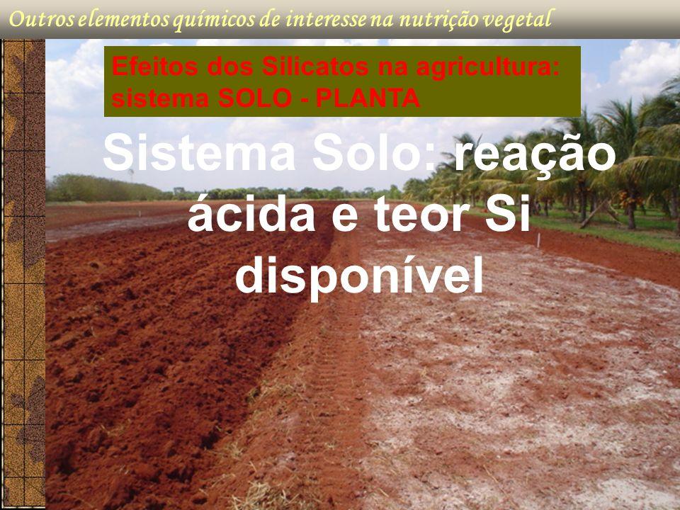 Outros elementos químicos de interesse na nutrição vegetal Sistema Solo: reação ácida e teor Si disponível Efeitos dos Silicatos na agricultura: siste
