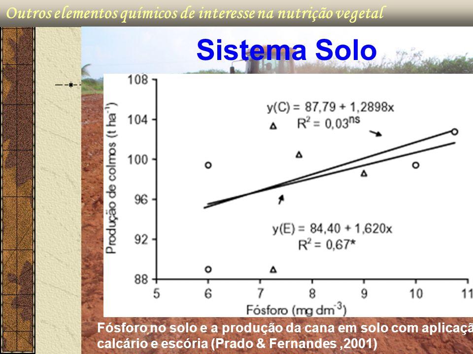 Outros elementos químicos de interesse na nutrição vegetal Sistema Solo Fósforo no solo e a produção da cana em solo com aplicação de calcário e escór