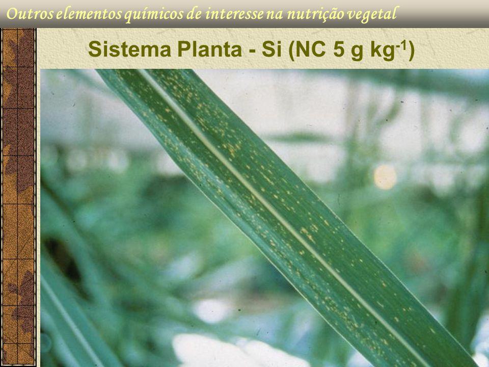 Outros elementos químicos de interesse na nutrição vegetal Sistema Planta - Si (NC 5 g kg -1 )