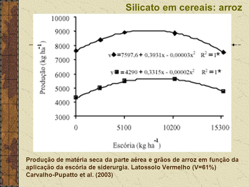 Produção de matéria seca da parte aérea e grãos de arroz em função da aplicação da escória de siderurgia. Latossolo Vermelho (V=61%) Carvalho-Pupatto