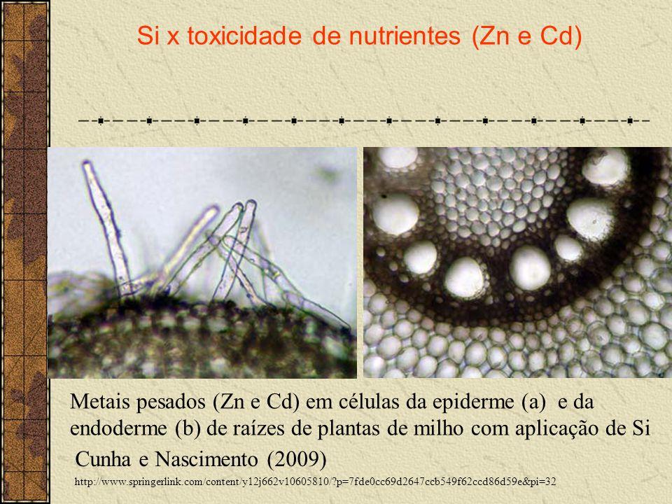 Cunha e Nascimento (2009) http://www.springerlink.com/content/y12j662v10605810/?p=7fde0cc69d2647ccb549f62ccd86d59e&pi=32 Si x toxicidade de nutrientes