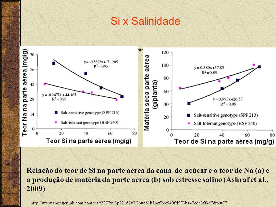 http://www.springerlink.com/content/t2277xu3p72162v7/?p=c61b1bcf2ec940fd973ba47cde3ff4e7&pi=77 Si x Salinidade Relação do teor de Si na parte aérea da