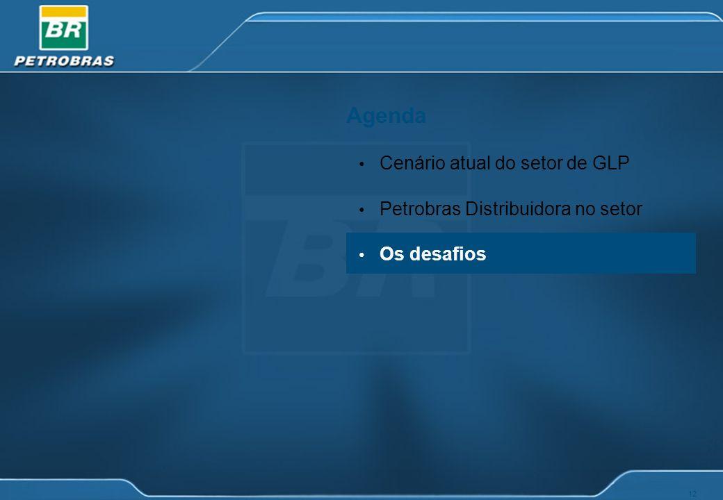 12 Agenda Cenário atual do setor de GLP Petrobras Distribuidora no setor Os desafios