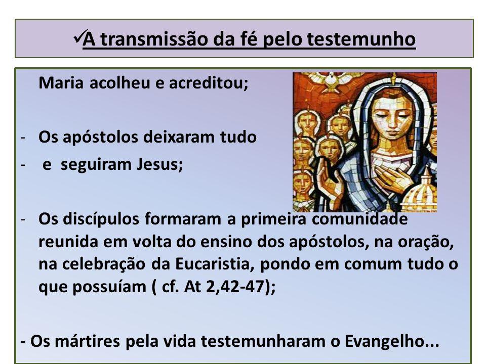 A transmissão da fé pelo testemunho Maria acolheu e acreditou; -Os apóstolos deixaram tudo - e seguiram Jesus; -Os discípulos formaram a primeira comunidade reunida em volta do ensino dos apóstolos, na oração, na celebração da Eucaristia, pondo em comum tudo o que possuíam ( cf.