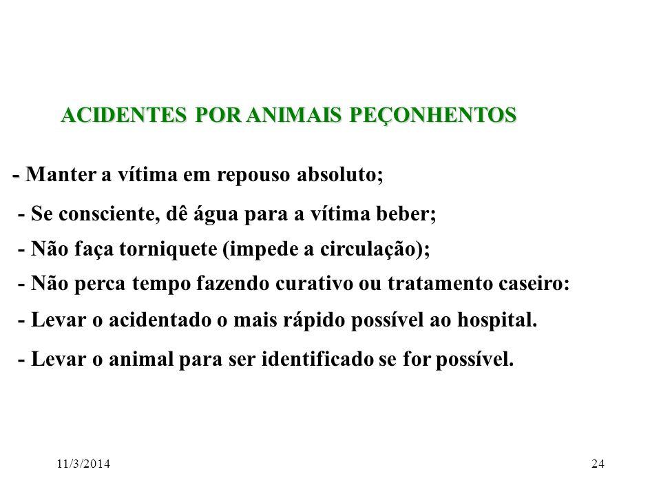 11/3/201424 ACIDENTES POR ANIMAIS PEÇONHENTOS ACIDENTES POR ANIMAIS PEÇONHENTOS - - Manter a vítima em repouso absoluto; - Se consciente, dê água para