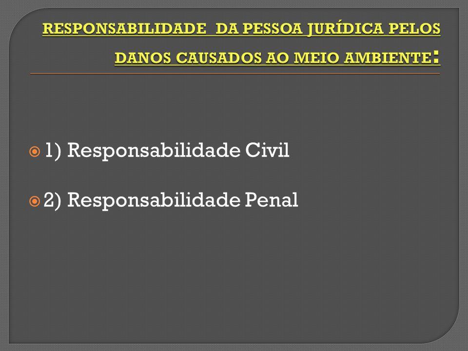 1) Responsabilidade Civil 2) Responsabilidade Penal