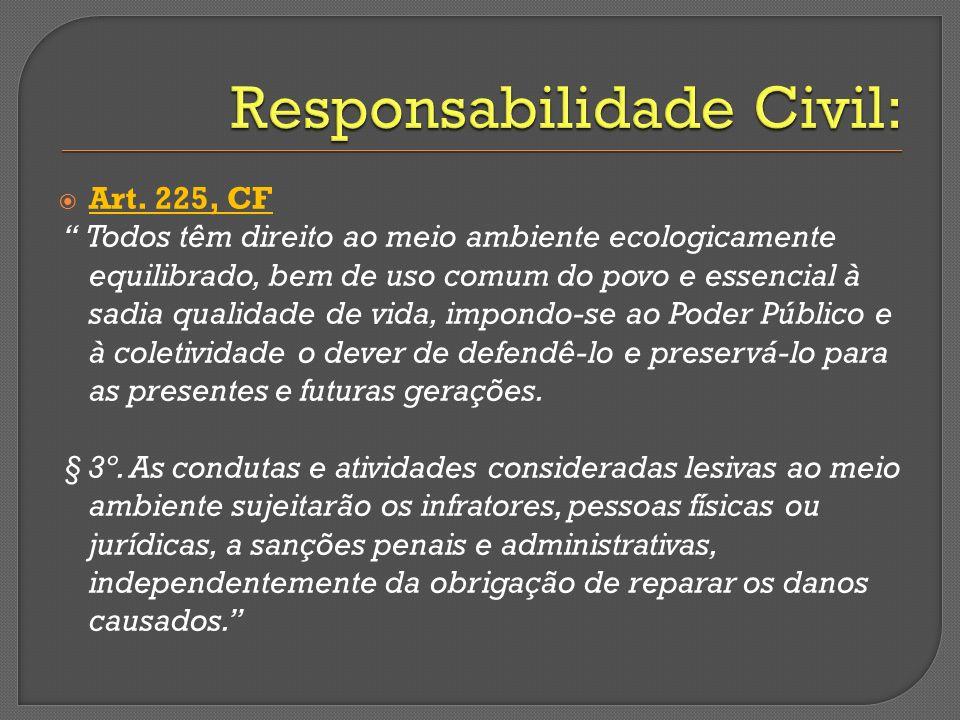 Art. 225, CF Todos têm direito ao meio ambiente ecologicamente equilibrado, bem de uso comum do povo e essencial à sadia qualidade de vida, impondo-se