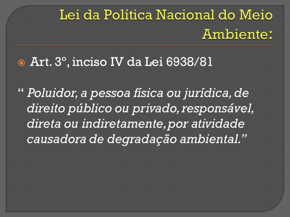 Art. 3º, inciso IV da Lei 6938/81 Poluidor, a pessoa física ou jurídica, de direito público ou privado, responsável, direta ou indiretamente, por ativ