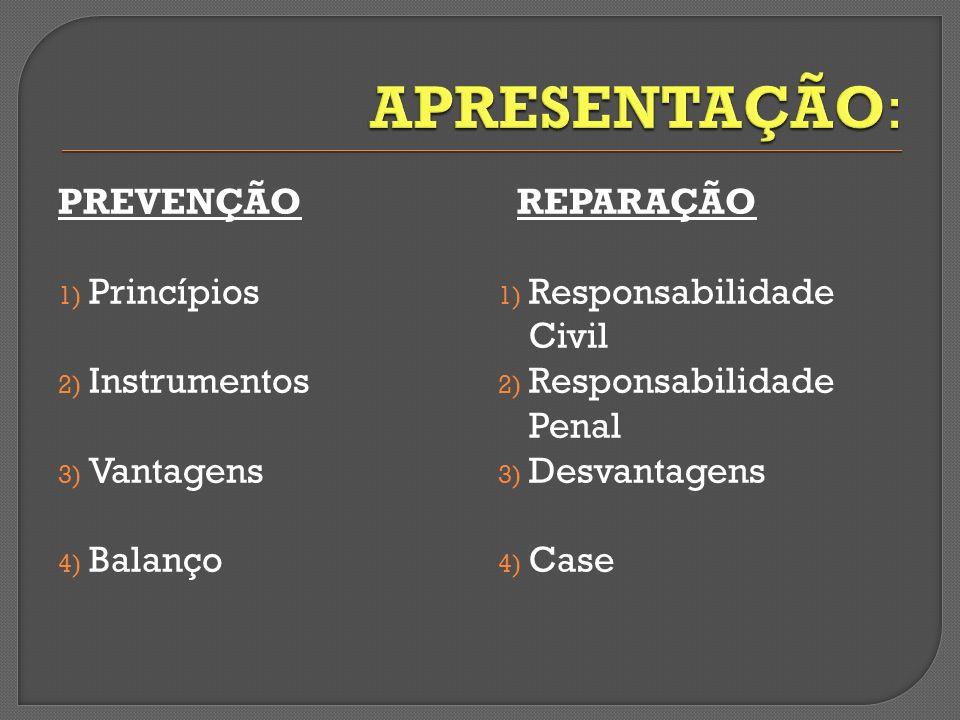 PREVENÇÃO 1) Princípios 2) Instrumentos 3) Vantagens 4) Balanço REPARAÇÃO 1) Responsabilidade Civil 2) Responsabilidade Penal 3) Desvantagens 4) Case