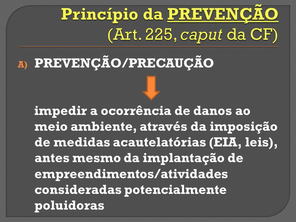 A) PREVENÇÃO/PRECAUÇÃO impedir a ocorrência de danos ao meio ambiente, através da imposição de medidas acautelatórias (EIA, leis), antes mesmo da implantação de empreendimentos/atividades consideradas potencialmente poluidoras