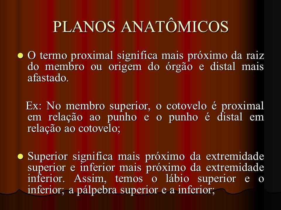PLANOS ANATÔMICOS O termo proximal significa mais próximo da raiz do membro ou origem do órgão e distal mais afastado. O termo proximal significa mais