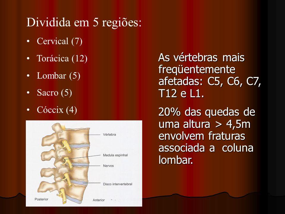 Dividida em 5 regiões: Cervical (7) Torácica (12) Lombar (5) Sacro (5) Cóccix (4) As vértebras mais freqüentemente afetadas: C5, C6, C7, T12 e L1. As