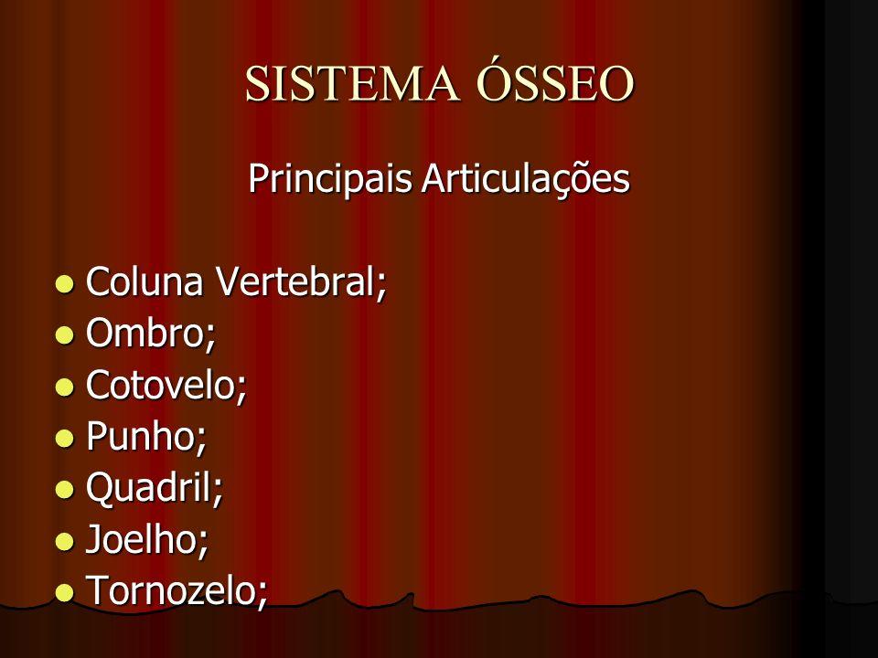 SISTEMA ÓSSEO Principais Articulações Coluna Vertebral; Coluna Vertebral; Ombro; Ombro; Cotovelo; Cotovelo; Punho; Punho; Quadril; Quadril; Joelho; Jo