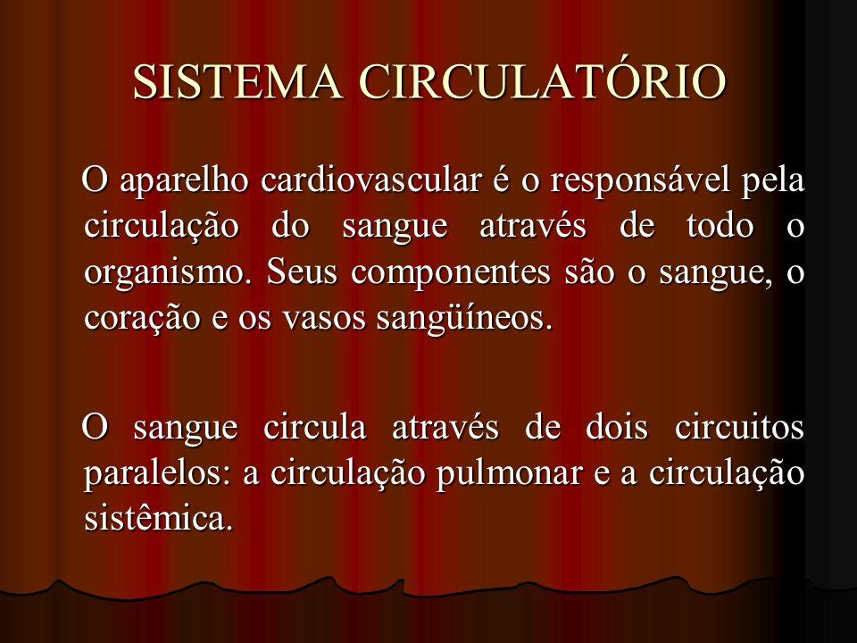 SISTEMA CIRCULATÓRIO O aparelho cardiovascular é o responsável pela circulação do sangue através de todo o organismo. Seus componentes são o sangue, o