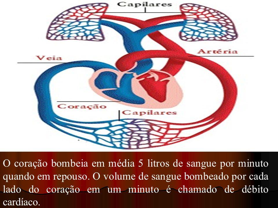 O coração bombeia em média 5 litros de sangue por minuto quando em repouso. O volume de sangue bombeado por cada lado do coração em um minuto é chamad