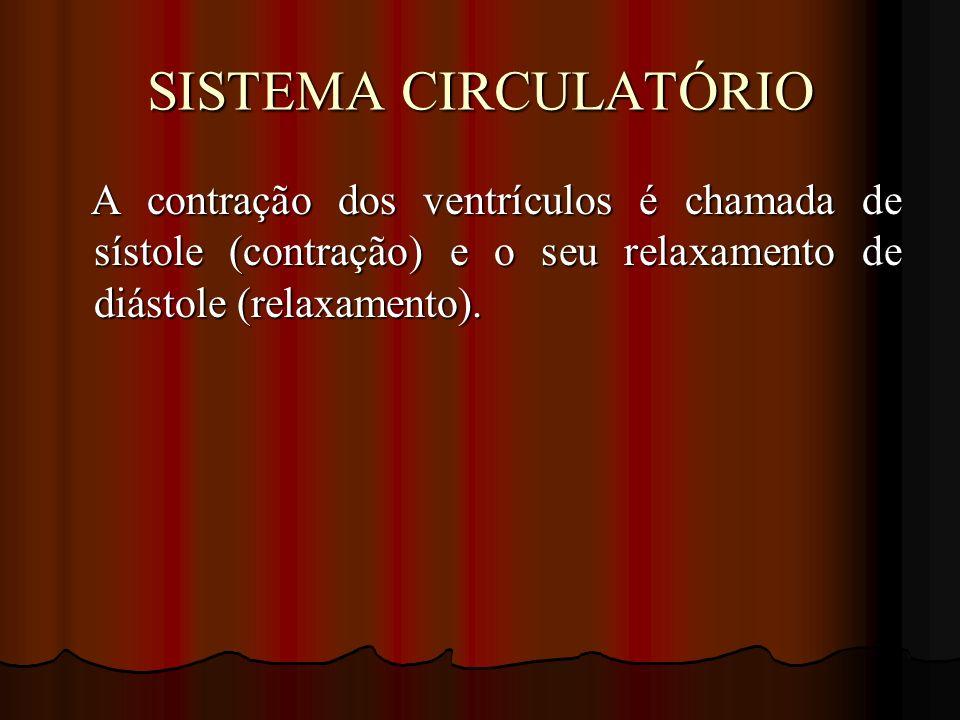 SISTEMA CIRCULATÓRIO A contração dos ventrículos é chamada de sístole (contração) e o seu relaxamento de diástole (relaxamento). A contração dos ventr