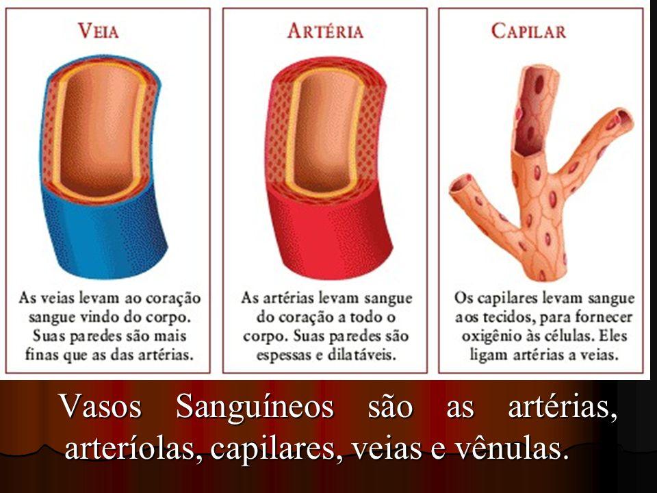 Vasos Sanguíneos são as artérias, arteríolas, capilares, veias e vênulas. Vasos Sanguíneos são as artérias, arteríolas, capilares, veias e vênulas.