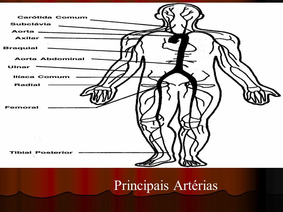 Principais Artérias
