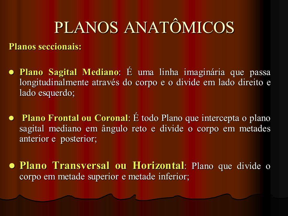 PLANOS ANATÔMICOS Planos seccionais: Plano Sagital Mediano: É uma linha imaginária que passa longitudinalmente através do corpo e o divide em lado dir