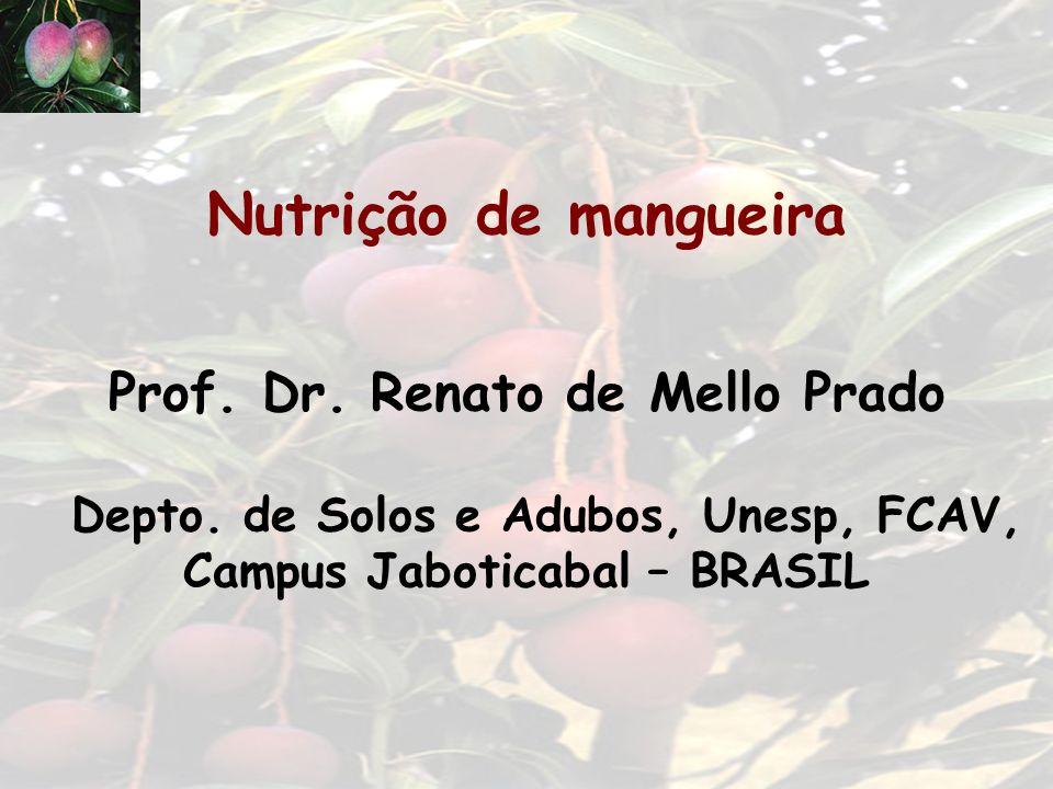 Nutrição de mangueira Prof. Dr. Renato de Mello Prado Depto. de Solos e Adubos, Unesp, FCAV, Campus Jaboticabal – BRASIL