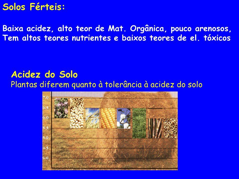 Acidez do Solo Plantas diferem quanto à tolerância à acidez do solo Solos Férteis: Baixa acidez, alto teor de Mat.