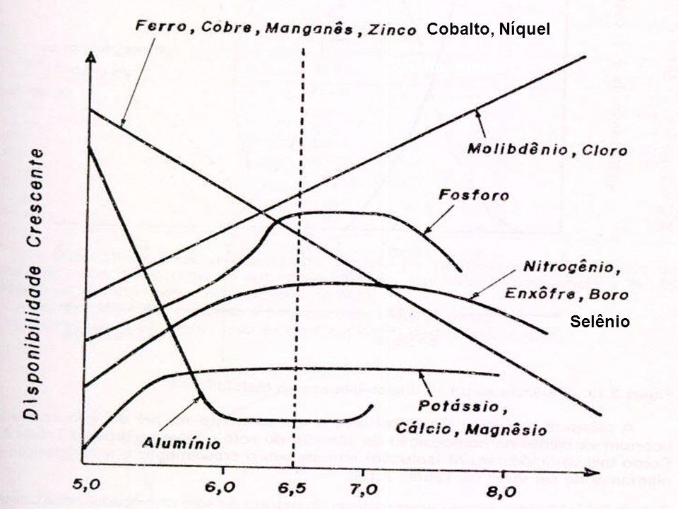 ,Cobalto, Níquel Selênio,Cobalto, Níquel