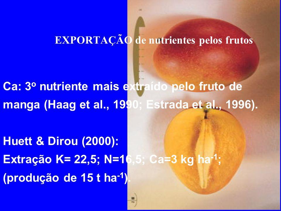 EXPORTAÇÃO de nutrientes pelos frutos Ca: 3 o nutriente mais extraído pelo fruto de manga (Haag et al., 1990; Estrada et al., 1996). Huett & Dirou (20