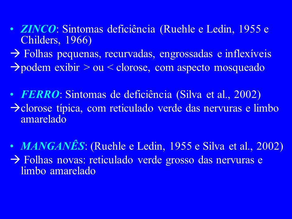 ZINCO: Sintomas deficiência (Ruehle e Ledin, 1955 e Childers, 1966) Folhas pequenas, recurvadas, engrossadas e inflexíveis podem exibir > ou < clorose, com aspecto mosqueado FERRO: Sintomas de deficiência (Silva et al., 2002) clorose típica, com reticulado verde das nervuras e limbo amarelado MANGANÊS: (Ruehle e Ledin, 1955 e Silva et al., 2002) Folhas novas: reticulado verde grosso das nervuras e limbo amarelado