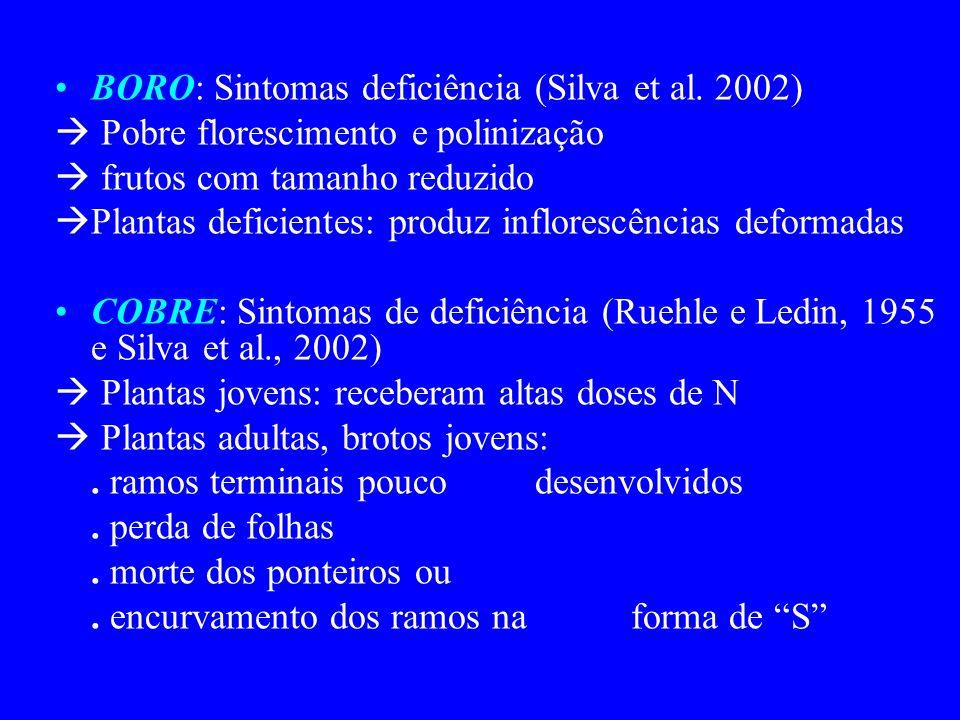 BORO: Sintomas deficiência (Silva et al. 2002) Pobre florescimento e polinização frutos com tamanho reduzido Plantas deficientes: produz inflorescênci