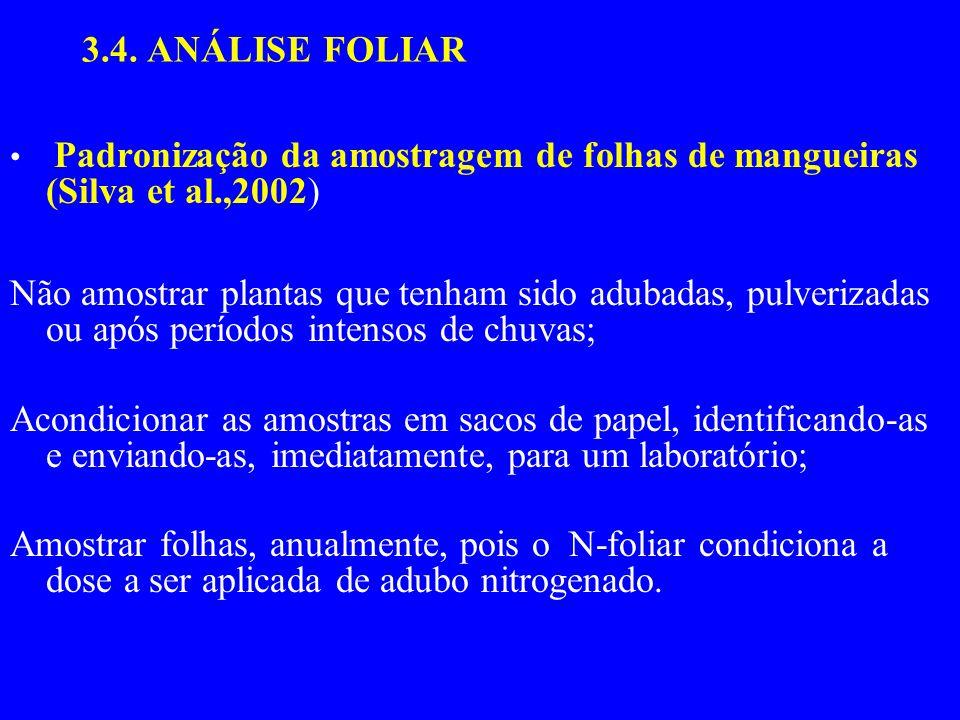 3.4. ANÁLISE FOLIAR Padronização da amostragem de folhas de mangueiras (Silva et al.,2002) Não amostrar plantas que tenham sido adubadas, pulverizadas