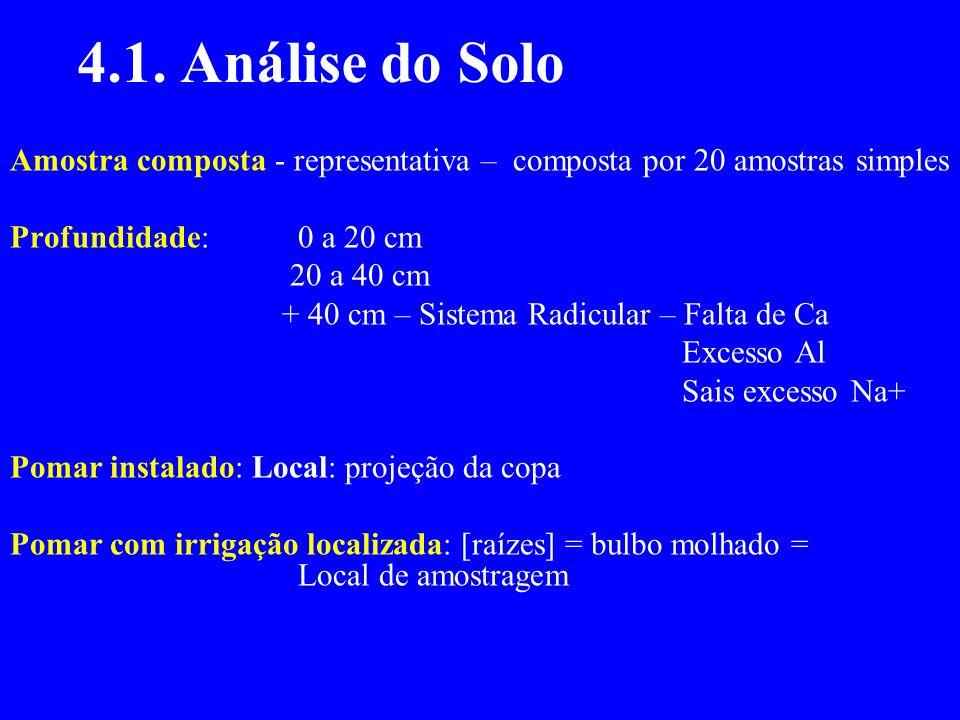 4.1. Análise do Solo Amostra composta - representativa – composta por 20 amostras simples Profundidade: 0 a 20 cm 20 a 40 cm + 40 cm – Sistema Radicul