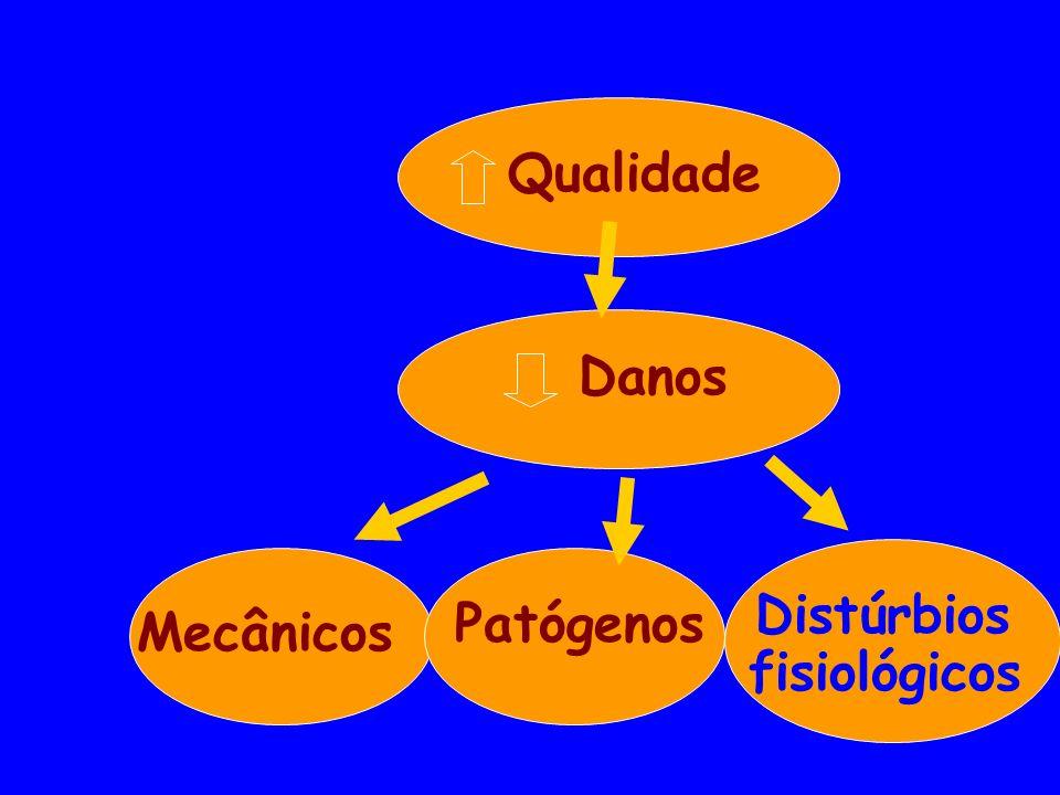 Qualidade Danos Mecânicos Patógenos Distúrbios fisiológicos