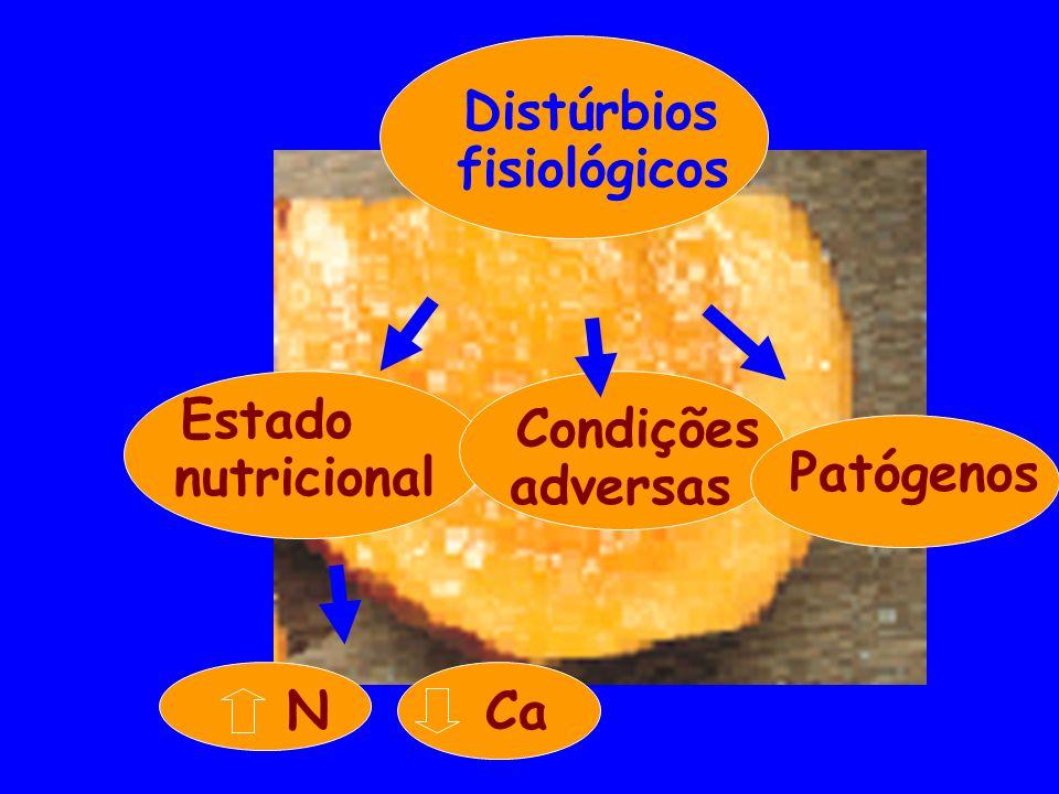 Distúrbios fisiológicos N Ca Estado nutricional Condições adversas Patógenos