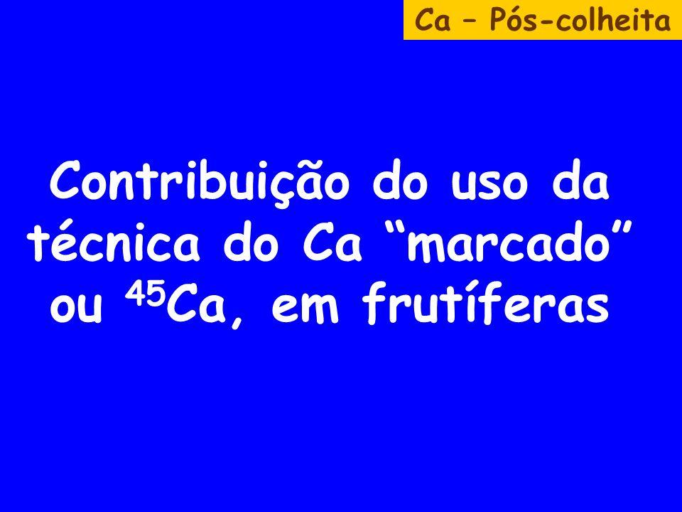 Contribuição do uso da técnica do Ca marcado ou 45 Ca, em frutíferas Ca – Pós-colheita