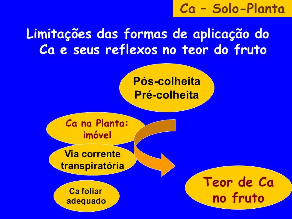 Limitações das formas de aplicação do Ca e seus reflexos no teor do fruto Ca – Solo-Planta Ca na Planta: imóvel Teor de Ca no fruto Pós-colheita Pré-colheita Via corrente transpiratória Ca foliar adequado