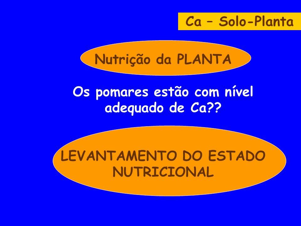 Nutrição da PLANTA Os pomares estão com nível adequado de Ca?? LEVANTAMENTO DO ESTADO NUTRICIONAL Ca – Solo-Planta