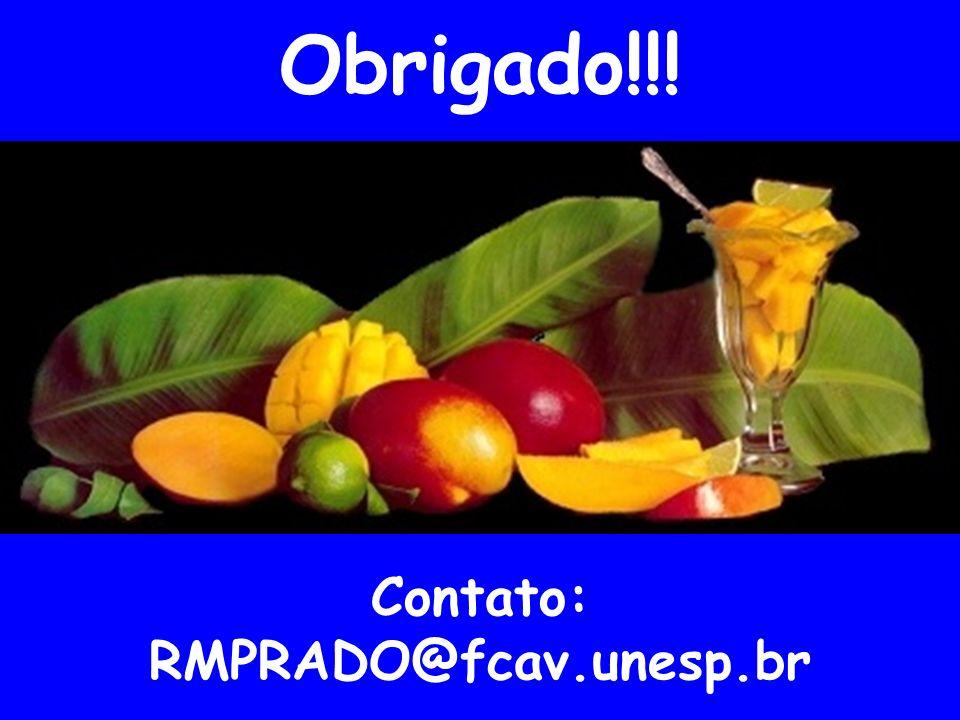 Obrigado!!! Contato: RMPRADO@fcav.unesp.br