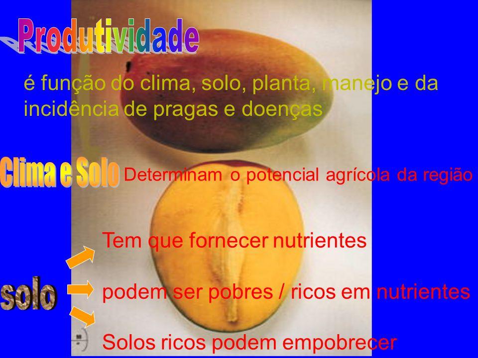 é função do clima, solo, planta, manejo e da incidência de pragas e doenças Determinam o potencial agrícola da região Tem que fornecer nutrientes podem ser pobres / ricos em nutrientes Solos ricos podem empobrecer