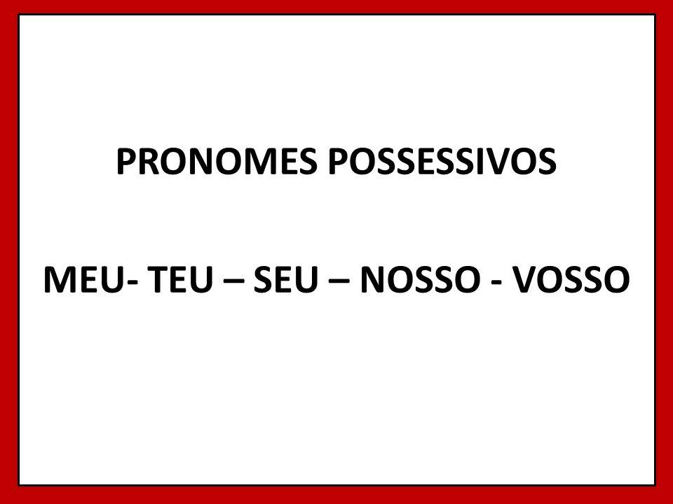 PRONOMES POSSESSIVOS MEU- TEU – SEU – NOSSO - VOSSO 3