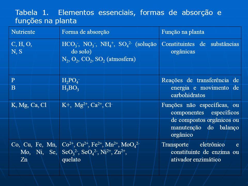 Tabela 1. Elementos essenciais, formas de absorção e funções na planta NutrienteForma de absorçãoFunção na planta C, H, O, N, S HCO 3 -, NO 3 -, NH 4