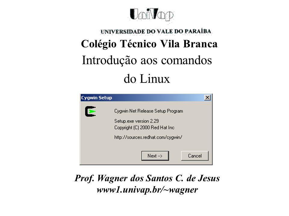 Colégio Técnico Vila Branca Introdução aos comandos do Linux Prof. Wagner dos Santos C. de Jesus www1.univap.br/~wagner