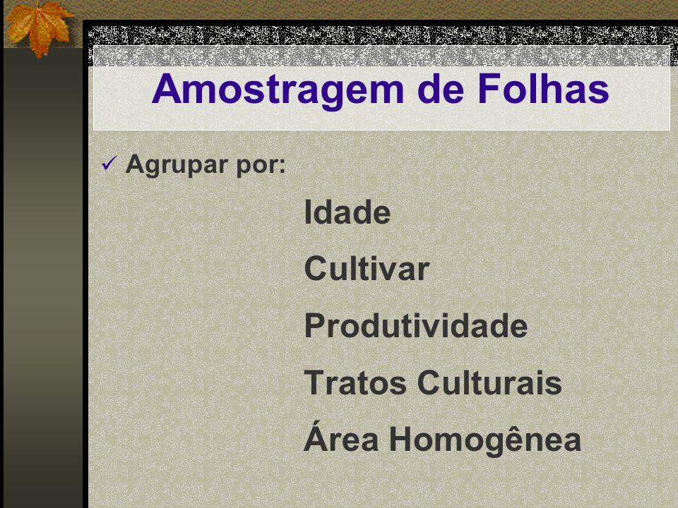 Amostragem de Folhas Agrupar por: Idade Cultivar Produtividade Tratos Culturais Área Homogênea