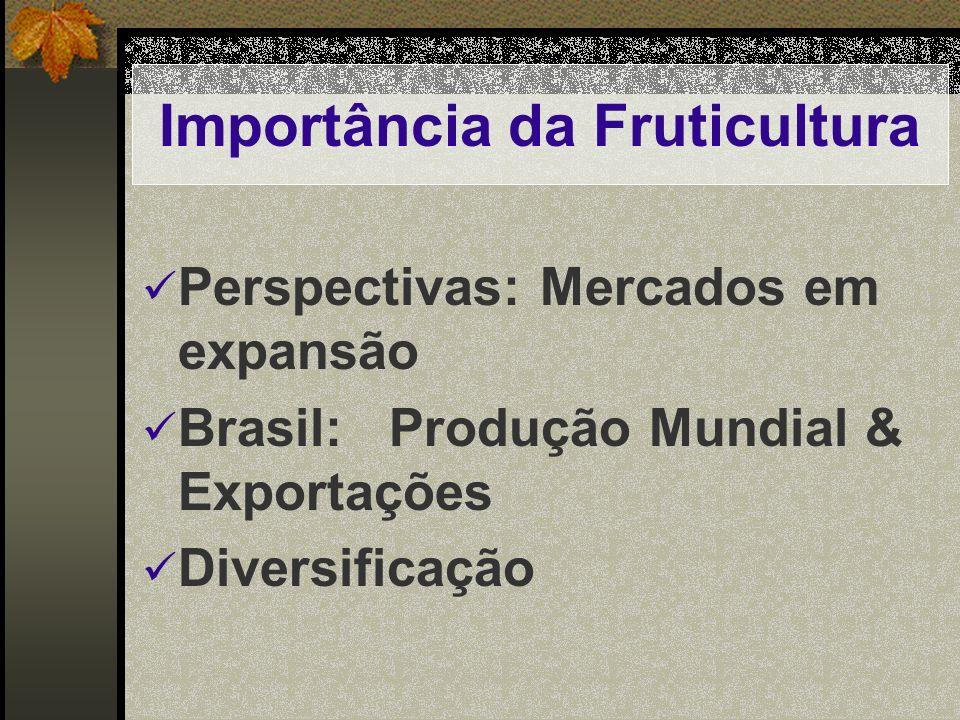 Importância da Fruticultura Perspectivas: Mercados em expansão Brasil: Produção Mundial & Exportações Diversificação