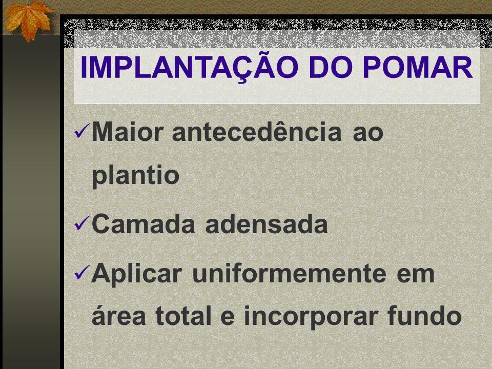 IMPLANTAÇÃO DO POMAR Maior antecedência ao plantio Camada adensada Aplicar uniformemente em área total e incorporar fundo