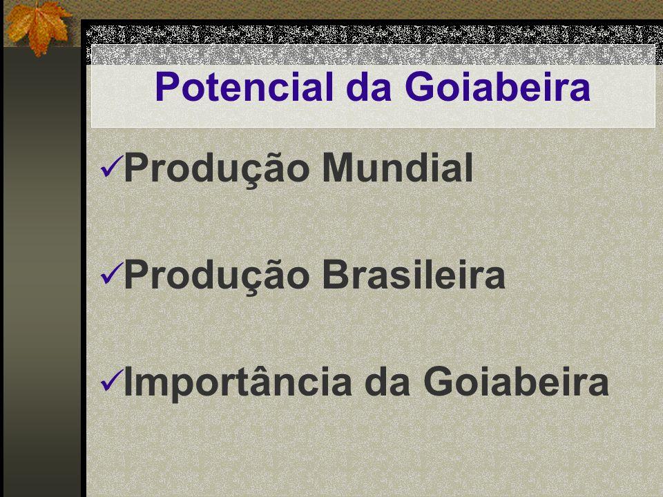 Potencial da Goiabeira Produção Mundial Produção Brasileira Importância da Goiabeira